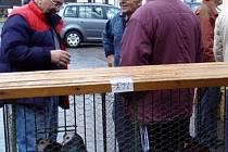 Na chovatelském trhu ve Stříbře byl značný zájem také o holuby.