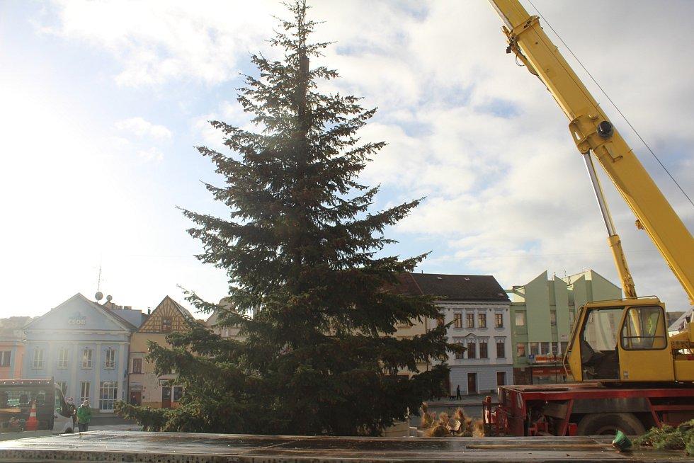 Usazení vánočního stromu na náměstí v Tachově.