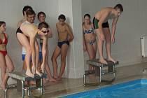 V přimdském bazénu se konal osmý ročník série plaveckých závodů nazvané Přimdský delfín.
