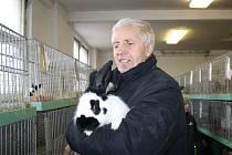 VÍCE NEŽ pět kilo má králík na snímku, německý obrovitý strakáč, se kterým chovatel Josef Šlehofer ze Studánky získal na podzimní výstavě ocenění.