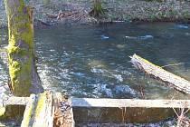 Naučná stezka Šipín - Místo kde dříve stávala lávka přes Úterský potok. Potok dosahuje v tomto místě šířku až 14 metrů.