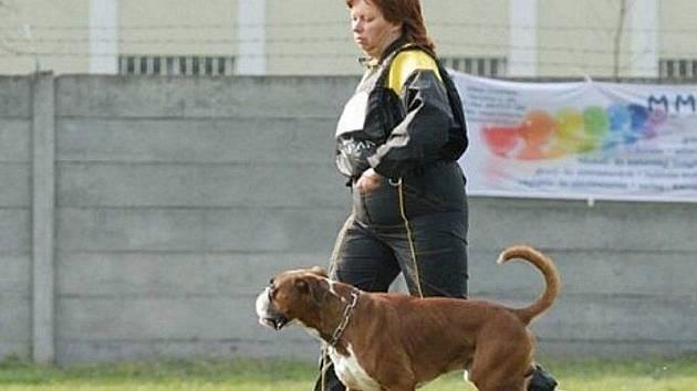 Jitka Baxová se svým čtyřnohým přítelem jezdí na soutěže po celé Evropě