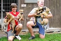 JIŘÍ VÁCHA A DAVID LANGE (zleva) chodí pomáhat do psího útulku U Šmudliny. Starají se také o nová čtyři štěňata, která někdo ve Stříbře nechal v areálu bývalých kasáren.