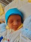 Jaroslav Fořtík se narodil 2. září v 8:05 mamince Janě a tatínkovi Davidovi ze Svojšína. Po příchodu na svět v plzeňské FN vážil bráška tříleté Kateřinky 2300 gramů.
