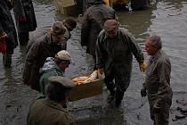 Nejvíce práce prý rybáře čeká při výlovu Hlinského velkého rybníku. Snímek je z předloňského výlovu.