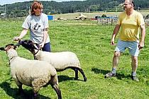 ana Fecková (na snímku s manželem Oldřichem a svými ovčími svěřenkyněmi) získala na výstavě nejvyšší ocenění.
