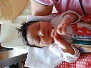 Denisa Krivdová se narodila 7. listopadu v 15:03 mamince Petře a tatínkovi Lukášovi z Boru u Tachova. Po příchodu na svět v plzeňské FN vážila jejich prvorozená dcerka 3870 gramů a měřila 53 cm.