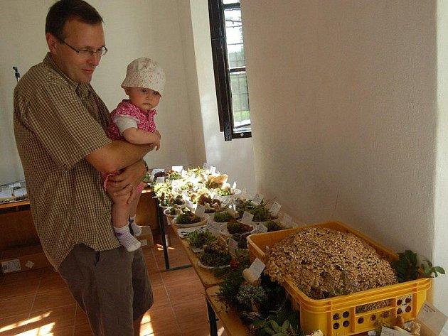VÝSTAVA HUB. Návštěvníci nedělní výstavy hub mohli obdivovat na 200 druhů hub, mezi nimi například vzácný obří kotrč němcův (vpravo dole).