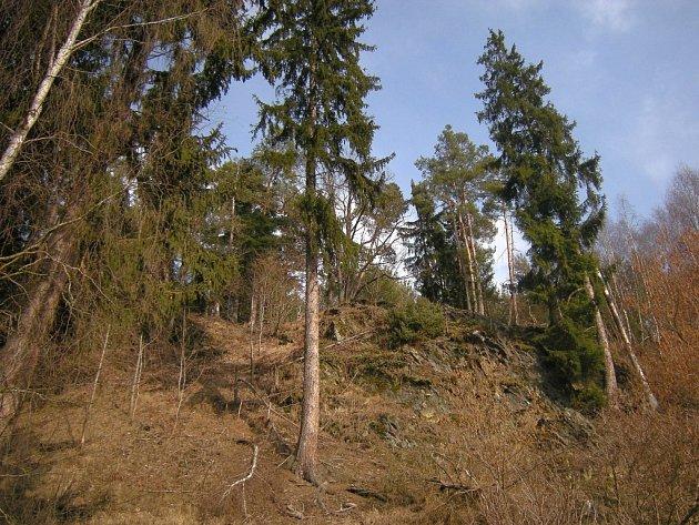 Skalnatá stráň nad Úterským potokem nedaleko Barvírny.