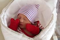 Samuel Neumann se narodil 12. února ve 14:46 rodičům Pavle a Romanovi z Mokroušů. Po příchodu na svět ve FN na Lochotíně vážil bráška Elišky (13) 3160 gramů a měřil 50 centimetrů.