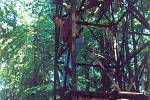 Snímek světelného majáku z archivu Šimona Dulovce.