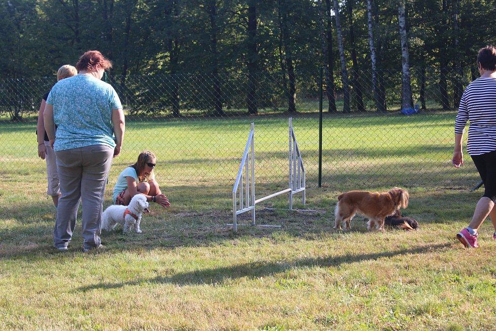 Nové hřiště pro psy.
