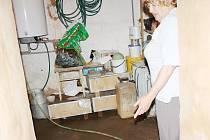 JAROSLAVA HANZALOVÁ ukazuje na podlahu technické místnosti, která je pokryta mazlavým bahnem.