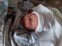 Pavel Vokroj se narodil 3. října v 8:05 mamince Kamile a tatínkovi Pavlovi z Přimdy. Po příchodu na svět v plzeňské fakultní nemocnici vážil bráška desetileté Adélky a dvouleté Elinky 2990 gramů a měřil 49 centimetrů.
