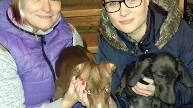 Na snímku zleva: Alena Morávková a Ivana Jarošová drží štěňata, která někdo vyhodil a jsou nyní také v Noře.