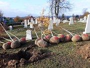 Brigádníci zasadili 14 nových stromů.