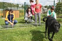 DĚTI VE čtvrtek v tachovském dětském domově pomáhaly s montováním přístřešku. Do příprav se zapojil také jejich společný pes Django.