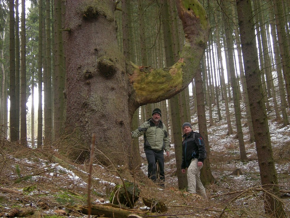 Ochránci přírody z Plané se chystají na letošní sezónu.