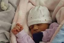 Josefína Němečková zKlenčí pod Čerchovem se narodila vklatovské porodnici 28. srpna v18:37 (2600 g, 48 cm). Pohlaví svého prvorozeného potomka si rodiče Tereza a Lukáš nechali jako překvapení až na porodní sál.