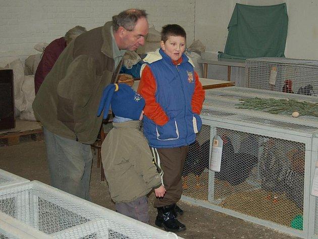 Králíky, holuby a drůbež mohli obdivovat návštěvníci sobotní okresní výstavy, kterou uspořádali ve svém areálu v Chodské ulici tachovští chovatelé.