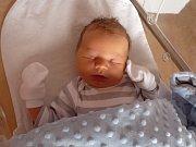 Osmiletá Elenka Bidlasová z Plané má radost z narození brášky Mikuláše (3,80 kg, 50 cm), který přišel na svět 13. března ve 4:19 ve FN v Plzni mamince Heleně a tatínkovi Miroslavu.