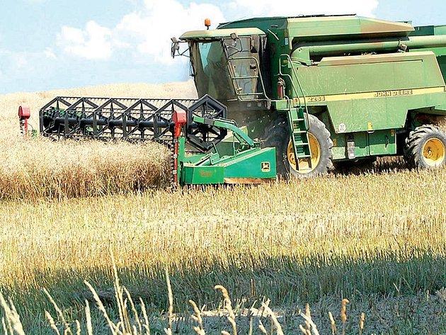 Nebýt krupobití před dvěma týdny, mohly letošní sklizně obilovin přinést nadprůměrné výnosy. Pozitivní je pro farmáře alespoň to, že o tisíc korun na tunu vzrostly výkupní ceny hlavních pěstovaných komodit a že sklizně díky dvoutýdennímu předstihu skončí
