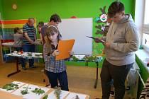 Okresní kolo soutěže Mladý zahrádkář se uskutečnilo v Domě dětí a mládeže Mraveniště v Tachově.
