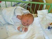 Albert (3,70 kg, 49 cm) se narodil 7. 5. ve 13:37 v Mulačově nemocnici v Plzni. Z jeho příchodu na svět se radují maminka Markéta Bílá a tatínek Jakub Kodl z Lomu u Tachova. Doma na brášku již čeká tříletá Viktorka.