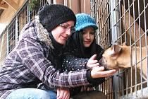 OBDAROVAT, POTĚŠIT A POHLADIT čtyřnohé kamarády přišly na Štědrý den do psího útulku U Šmudliny také Iveta a Anna Karáskovi (na snímku).