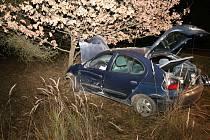 Auto po střetu se srnou narazilo do stromu.