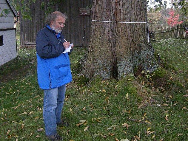 Dr. Michálek při evidenci zajímavých stromů.