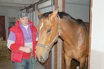 STANISLAV DANĚK s chloubou své stáje, koněm Noidem.