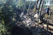 Dva dny tahali hasiči z rašeliny lesní stroje