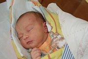 Adam Mištrík ze Studánky se narodil v domažlické porodnici  v pondělí 20. února ve 20.05 hodin mamince Evě a tatínkovi Jánovi. Po příchodu na svět vážil bráška Janíka (7) a Tomáška (4) 3,89 kg a měřil 50 cm. Jméno Adámkovi vybrala maminka.