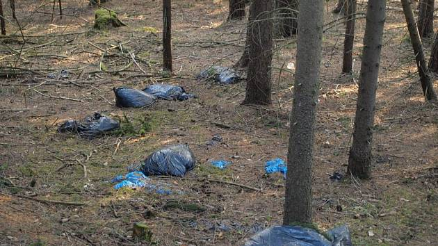 V okolí Michalových Hor vzniklo několik černých skládek. Na stráni pod silnicí do Hostíčkova je i uhynulý vlčák.
