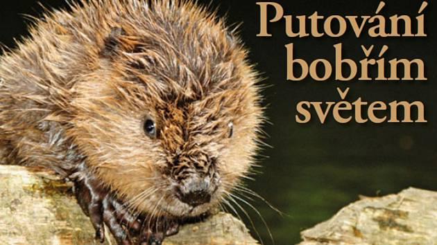 TITULNÍ STRANA jednoho ze dvou nových průvodců, které seznámí turisty s naučnou stezkou Vodní svět. Ta se nachází v CHKO Český les nedaleko obce Lesná.