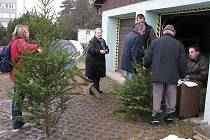 UŽ PRODÁVAJÍ. Stromek můžete od včerejška koupit i v tachovské Panenské ulici. Nabízí veškeré druhy stromků z celého Tachovska.