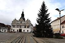 Čtrnáct metrů vysoký smrk na náměstí ve Stříbře.