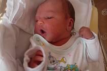 Anna (3,31 kg, 49 cm) se narodila 8. 10. v 0:28 ve FN v Plzni. Na světě ji přivítali rodiče Jana a Kamil Scharnaglovi z Tachova. Doma se na sestřičku těší Ester (4) a Šimon (2).