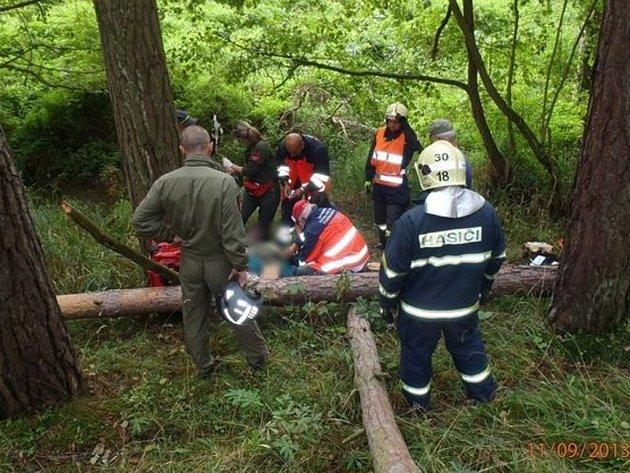 S těžkým zraněním byl leteckou záchrannou službou do nemocnice převezen muž, na kterého v lese mezi Oldřichovem a Trnovou spadl strom.