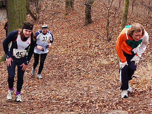 Nejvíce zabrat dalo účastníkům Silvestrovského běhu ve Stříbře příkré stoupání před cílovou rovinkou. Vlevo vítěz kategorie veteránů a držitel traťového rekordu Vladimír Sýkora.