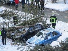 Strom padl v Plané na auto.