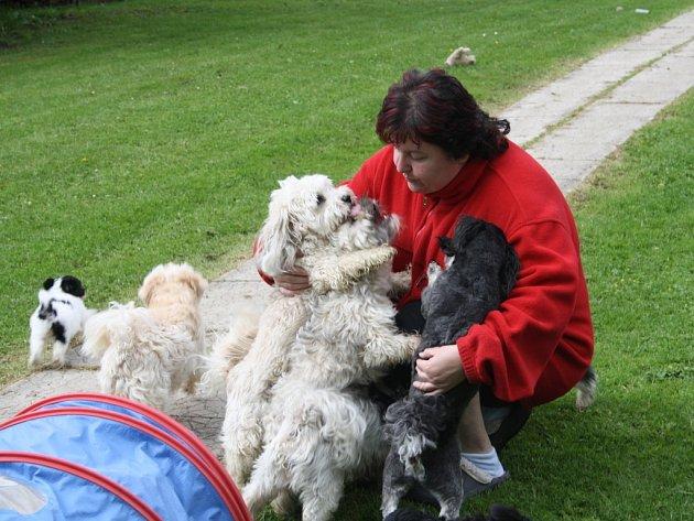 SVĚŘENCI EVY KVASNIČKOVÉ jsou velmi přítulní a velice společenští psíci.