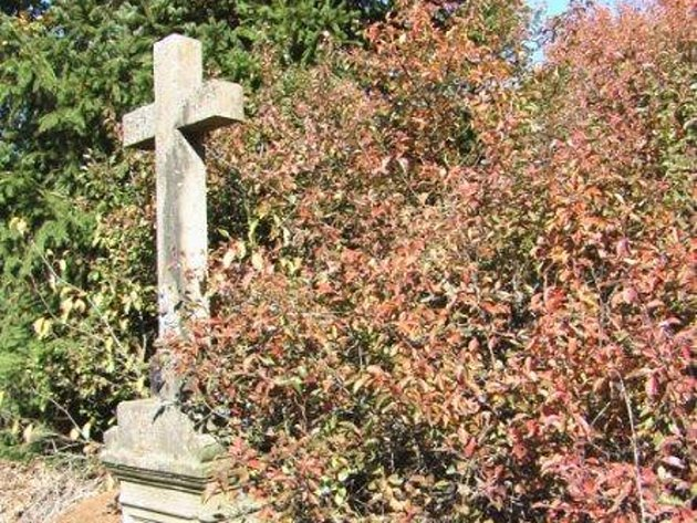 Kamenný kříž v křoví u sídliště Rapotín v Tachově.