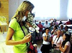 Kočky a kocoury obdivovali návštěvníci výstavy v Chodové Plané.
