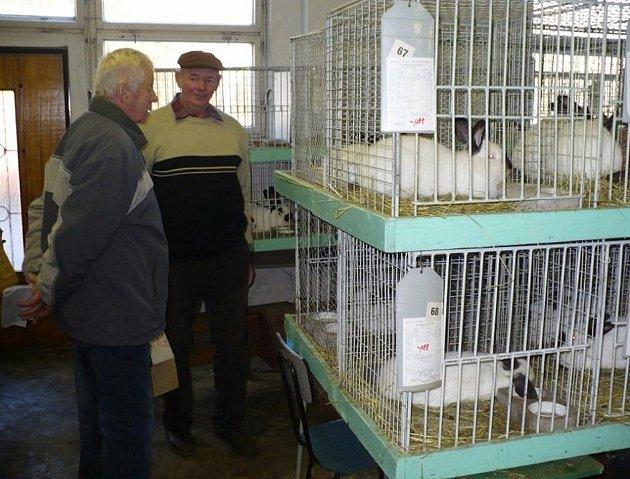 SE ZÁJMEM veřejnosti se setkala víkendová chovatelská výstava v Tachově.