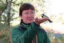 U rybníka v Plané lidé pozorovali ptactvo.