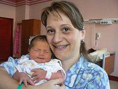 Lence a Jiřímu Altmanovým z Částkova u Tachova se 2. ledna v 8.40 hod. narodila v plzeňské fakultní nemocnici dcera Alice (4,11 kg, 52 cm).