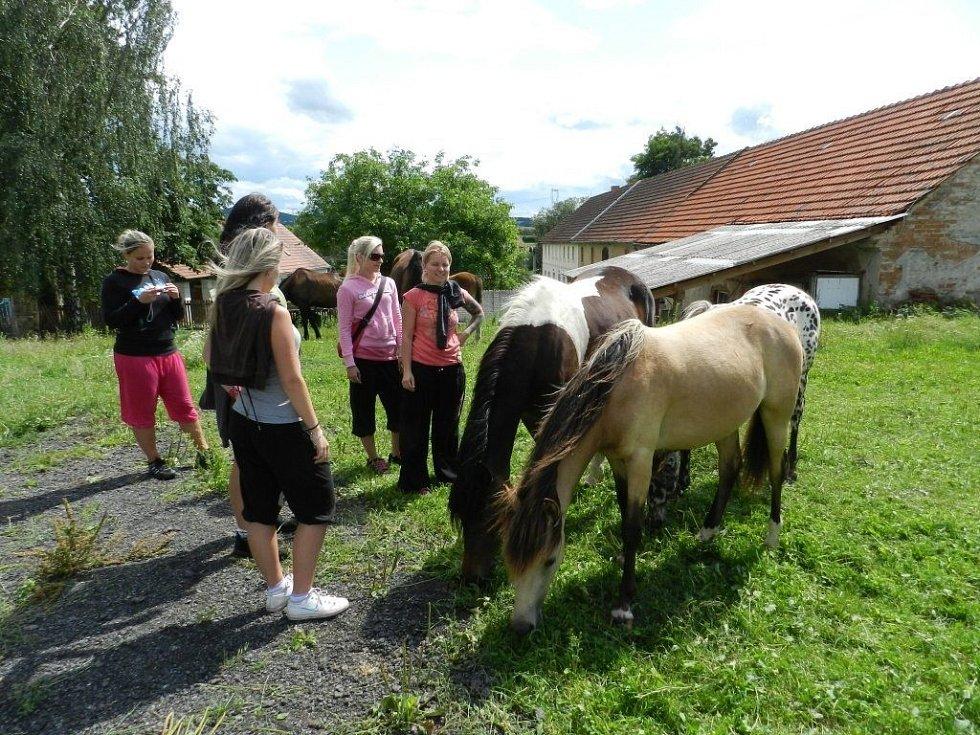 Spousty lidí lákala i jízda na koních.