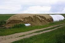 Opakovaně se zemědělci z Kladrub potýkají se řáděním vandalů. Výsledkem není jen potrhaný vak na uskladnění krmiva, ale především zcela znehodnocené samotné krmivo.
